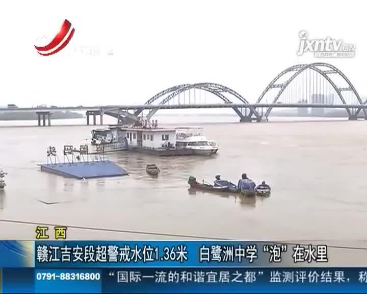 """赣江吉安段超警戒水位1.36米 白鹭洲中学""""泡""""水里"""