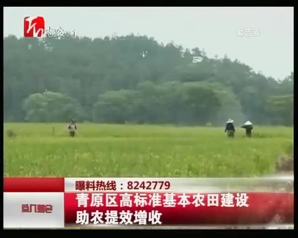 青原區高標準基本農田建設助農提效增收