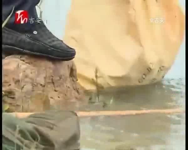 峡江:河长升级版 绘制最美赣江新画卷