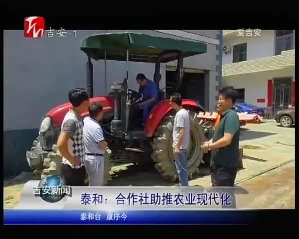 泰和:合作社助推农业现代化