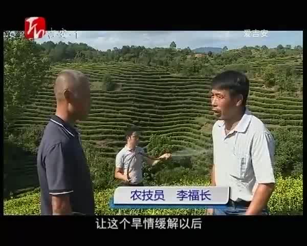 万安、安福抗旱保生产