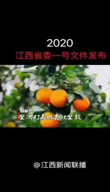 2020江西省委一号文件发布