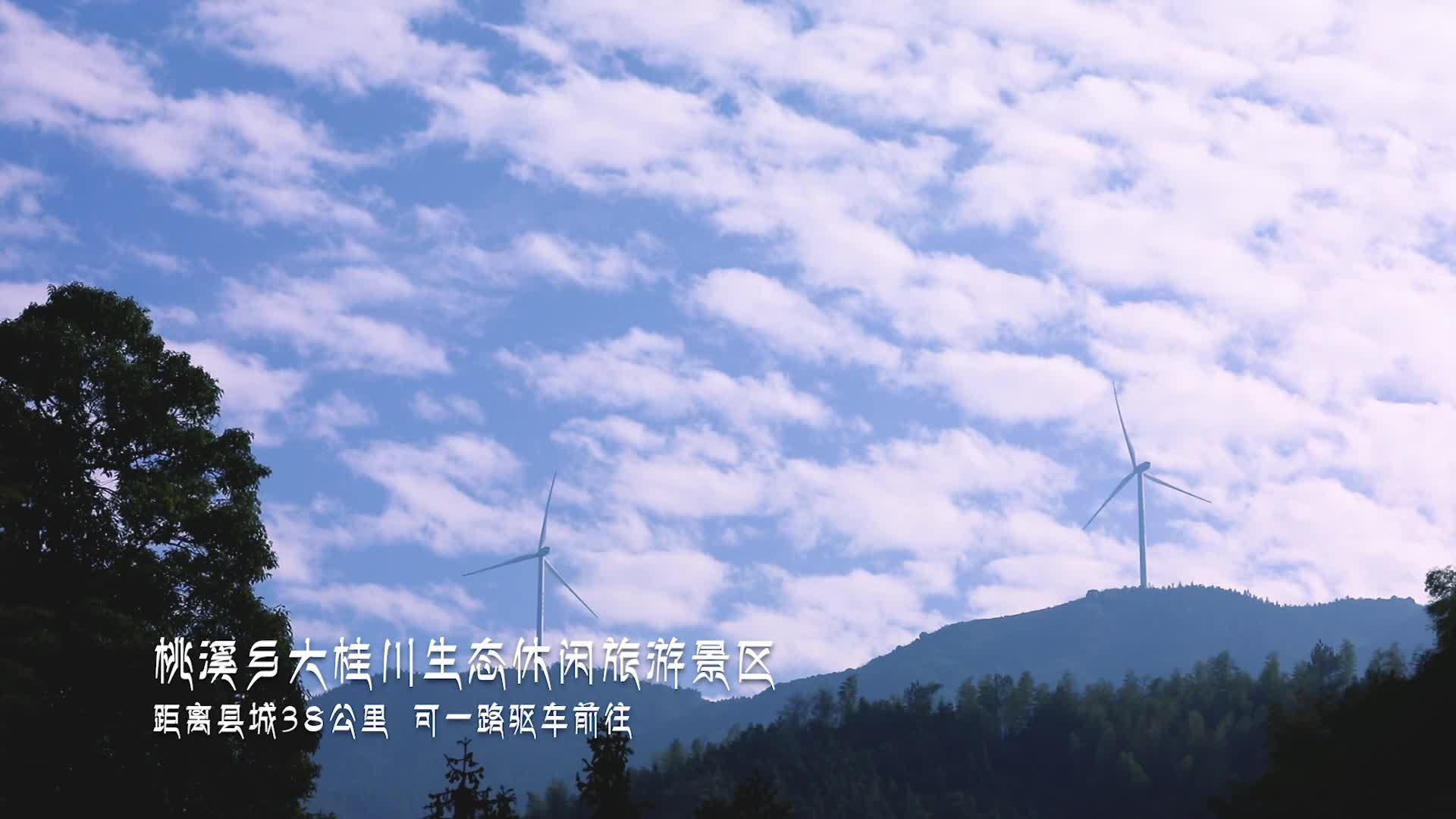 爱上大桂川 生态休闲游